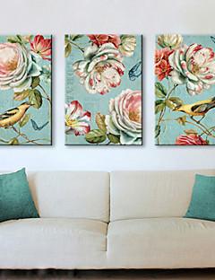 toile tendue oiseaux imprimé animal vintage et ensemble floral de 3 1301-0231