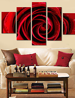 Stretched Canvas Art Floral Red Rose Set of 5
