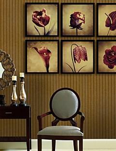 Virágos / Botanikus Bekeretezett vászon / Bekeretezett szett Wall Art,PVC Fekete Háttéranyag nélkül a Frame Wall Art