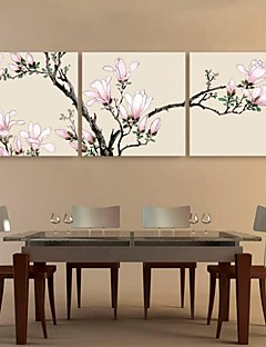 E-HOME® Stretched Canvas Art Pink Magnolia Decoration Painting Set of 3