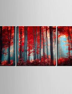 e-HOME lona envuelta arte de madera roja conjunto pintura decorativa de 3