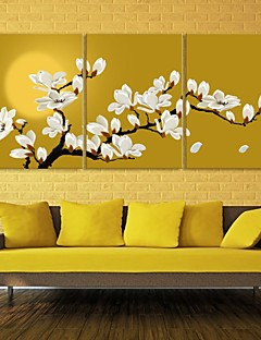 E-HOME® Stretched Canvas Art Magnolia Decoration Painting Set of 3