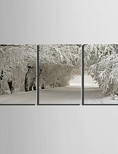 e-Home® opgespannen doek kunst sneeuw scene decoratie schilderij set van 3