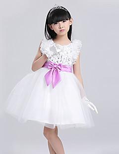 꽃의 소녀 드레스 - A라인 짧은 소매 무릎길이 레이스