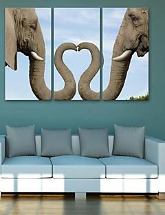e-FOYER toile tendue art éléphant peinture décoration ensemble de trois