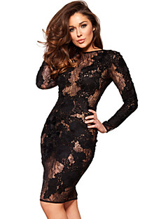 Chinanuo Women's Casual/Party Micro-elastic Long Sleeve Knee-length Dress (Lace)
