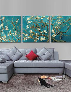 conjunto de 3 lienzo envuelto para galerías de arte van gogh almendra