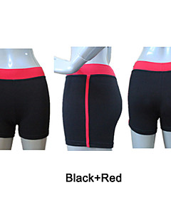 Cotton/Lycra Dance Shorts with Side Piping More Colors for Girls and Ladies