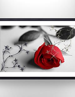 Floral/Botánico / Bodegón Impresión de arte enmarcada Arte de la pared,Poliestireno Negro Passepartout incluido con Marco Arte de la pared