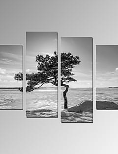 カジュアル / 風景画 / 写真 / 愛国 / 現代風 / ロマンチック / トラベル キャンバスプリント 4枚 ハングアップする準備ができました , 縦式