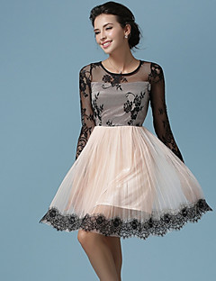 Ball Gown Mother of the Bride Dress - Champagne Knee-length Lace / Tulle