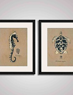Framed  Seahorse and  Turtle Canvas Print Art for  Office Decoration 40x50cm Set of 2 Ready To Hang