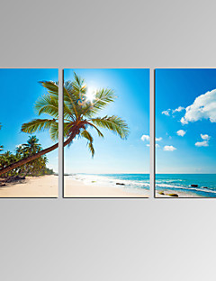 VISUAL STAR®3 Panel Seascape Canvas Print Beach Landscape Wall Art Ready to Hang