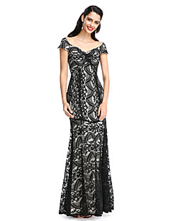 TS Couture® Formal Evening Dress Sheath / Column V-neck Floor-length Lace with