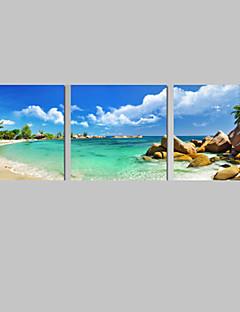 キャンバスセット 風景 カジュアル Modern,3枚 縦長 版画 壁の装飾 For ホームデコレーション