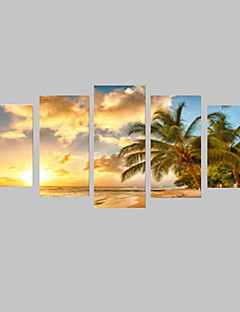 5 Panels Sunny Beach with Trees Picture Print on Canvas Unframed