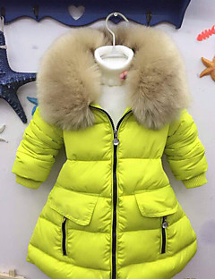 Mädchen Daunen & Baumwoll gefüttert-Lässig/Alltäglich einfarbig Baumwolle Winter Grün