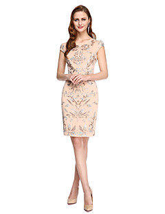 TS Couture Cocktail Party Prom Dress - Ivanka Style Celebrity Style Sheath / Column Jewel Knee-length Lace with Appliques