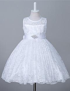 A-line, ברך, אורך, ילדה, ילדה, שמלה, תחרה, שרוולים, תכשיט, צוואר, קריסטל
