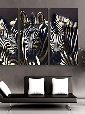 e-Home® allungata tela set zebra decorazione pittura di 3
