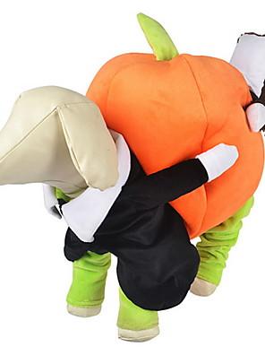 pejsky Kostýmy / Kombinéza Oranžová Oblečení pro psy Zima / Jaro/podzim Dýně Roztomilé / cosplay / Halloween