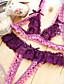 Bustiers Correspondants / Ultra Sexy / Costumes Vêtement de nuit Femme Mosaïque Dentelle Rose / Violet / Rouge / Noir Aux femmes