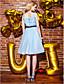 Koktejlový večírek / Maturita / Promoce / Dovolená / Podnikový večírek Šaty - Retro inspirované Plesové šaty Klenot Ke kolenům Šifón / Tyl