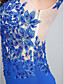 TS Couture Evento Formal Vestido - Fendas Sereia Decote em U Cauda Escova Tule Microfibra Jersey com Apliques