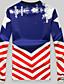 Herren Pullover Lässig/Alltäglich Sport Aktiv 3D-Druck überdimensional Rundhalsausschnitt Fleece-Futter Mikro-elastisch Baumwolle Langarm