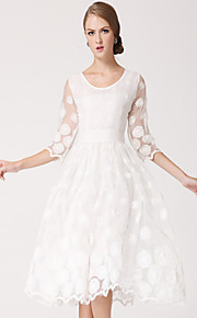 TS Elegance Emborider Organza Swing Dress