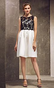 Knee-length Satin/Lace Bridesmaid Dress - Multi-color Plus Sizes Sheath/Column Strapless