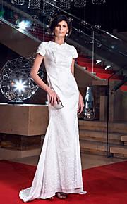 Formal Evening/Prom/Military Ball Dress Plus Sizes Sheath/Column Jewel Floor-length Lace