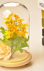 bordcenter DIY glassdeksel bord deocrations (planter inkludert)