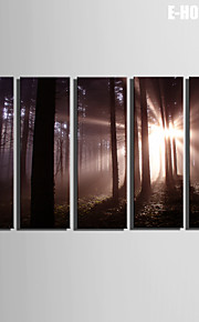 e-Home® sträckta kanvas konst skogen dekorationsmåleri uppsättning av 5