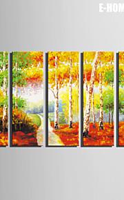 E-Home® Leinwandkunst Wald dekorative Malerei Satz von 5
