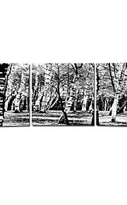 visuaalinen star®abstract tree venytetty kankaalle tulostus musta ja valkoinen kangas maalaus valmis roikkumaan