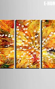e-Home® venytetty kankaalle taiteen kukka koristelu maalaus sarja 3