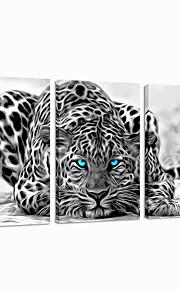 교수형 시각 star®abstract 동물 뻗어 캔버스 인쇄 그룹 벽 예술 준비