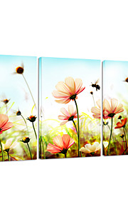 visuell star®flower utskrift tre pannel hjem innredning veggen kunst klar til å henge lerret