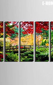 E-HOME® Stretched Canvas Art The Forest of The Small Wooden Bridge Decorative Painting  Set of 5