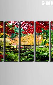 e-Home® sträckta canvas konst skogen av den lilla träbron dekorationsmåleri uppsättning av 5