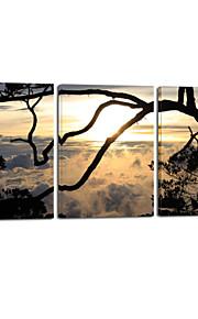 paysages visuelle star®natural mur de triptyque d'impression de toile tendue suspendus art prêt à accrocher