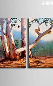 e-home® strukket lerret kunst treet dekormaling sett 2