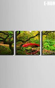 Landskap Canvastryck Tre paneler Redo att hänga , Andra