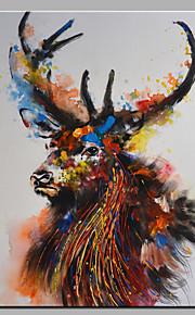 手描きの 動物Modern 1枚 キャンバス ハング塗装油絵 For ホームデコレーション