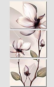 Botanisch / Modern / Pop Art Canvas Afdrukken Drie panelen Klaar te hangen , Horizontaal