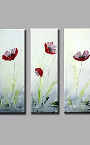 """estirada (listo para colgar) pintura al óleo pintado a mano 36 flores modernas """"x36"""" arte de la pared de la lona tulipanes rojos"""