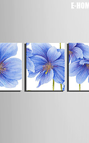 Botanisk Lerret Print Tre Paneler Klar til å henge,Vannrett