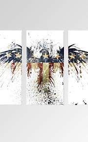 Stilleven / Dieren / Vrije tijd / Botanisch / Modern / Romantisch / Pop Art Canvas Afdrukken Drie panelen Klaar te hangen,Verticaal