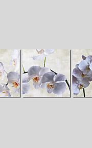 Botanisk / Moderne / Romantikk Lerret Print Tre Paneler Klar til å henge,Vannrett